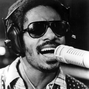 The very talented Stevie Wonder